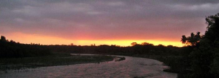 52 - La senda del crepúsculo X (Zapotillo, Ecuador, enero 2013)